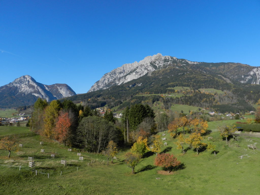 Herbstlicher Stoderzinken und Kamm